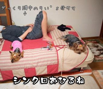 5_20110523202300.jpg