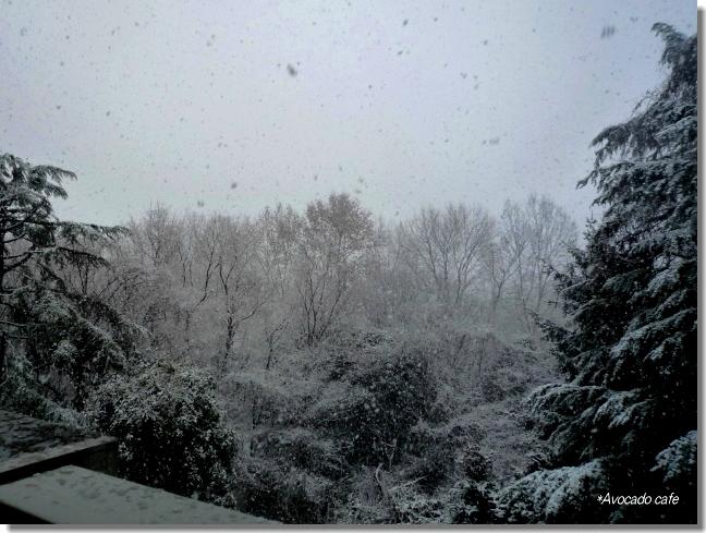 雪景色am10