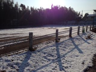14 1 22 雪景色1