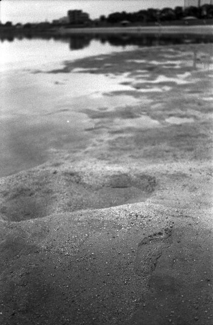 ふるさとの浜辺01c