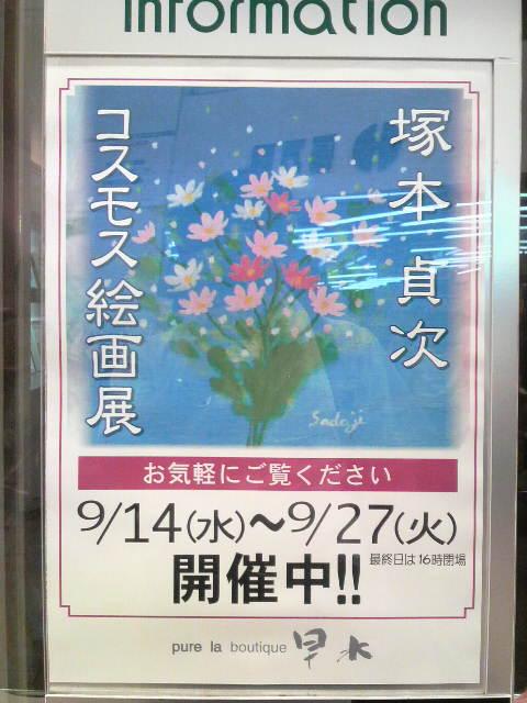 塚本貞次コスモス絵画展