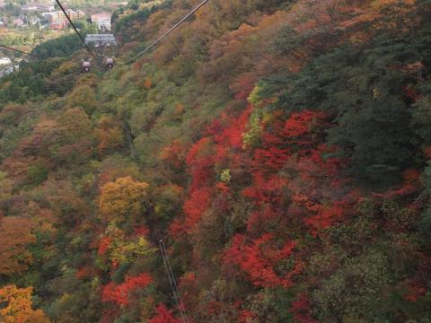 大湧谷 紅葉