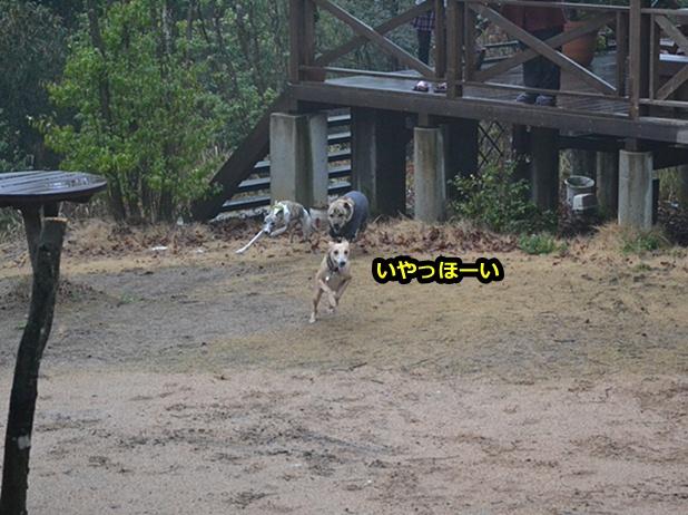 20120323-23.jpg