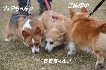 b_1608.jpg