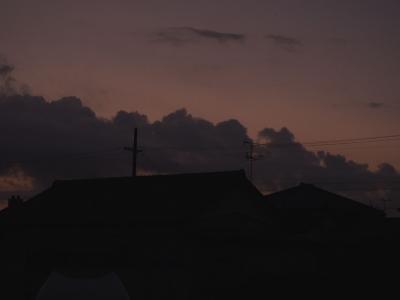 お散歩夜明け前