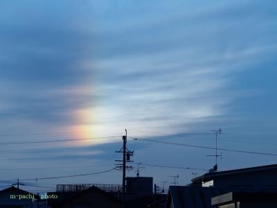 彩雲ホワイト
