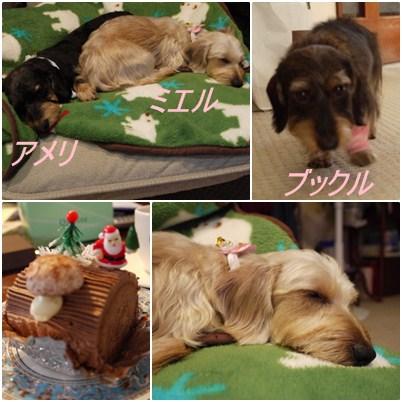 Christmas_Day_2011