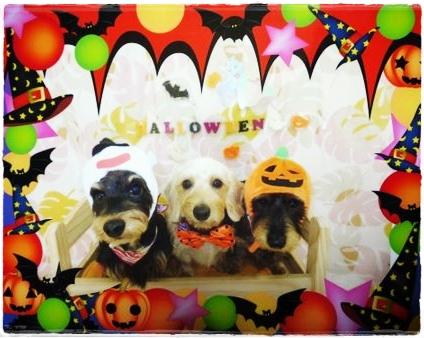 halloween_1023