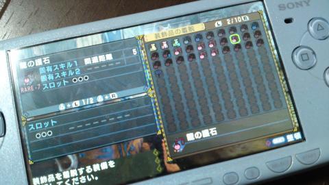 SN3J0180_convert_20110310221506.jpg