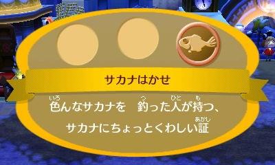 image_20130128194248.jpg