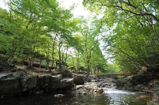 20100905魅惑の里 太田川源流の森 焼山川源流1
