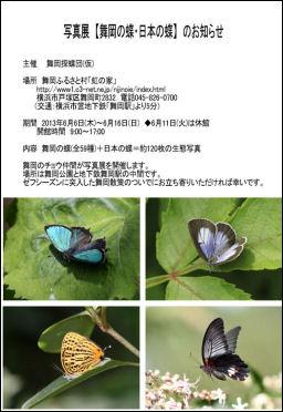 2013写真展【舞岡の蝶・日本の蝶】