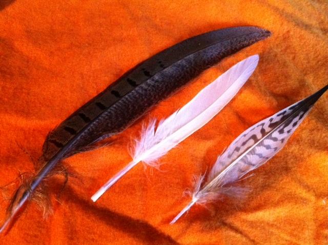 羽根各種。天然です!