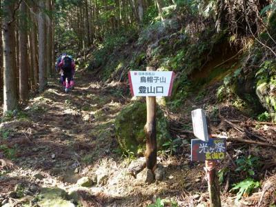 2012-03-11-010.jpg