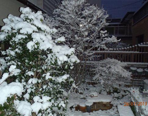 初雪 013-001