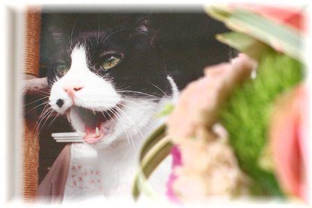 2013年 ナオミの命日のお花③