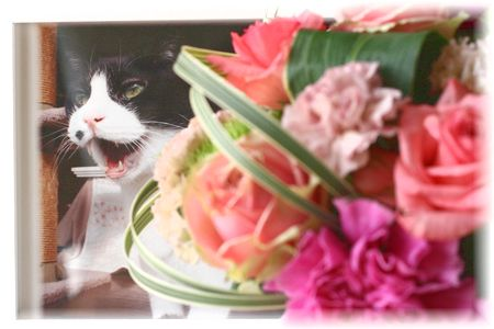 2013年 ナオミの命日のお花④