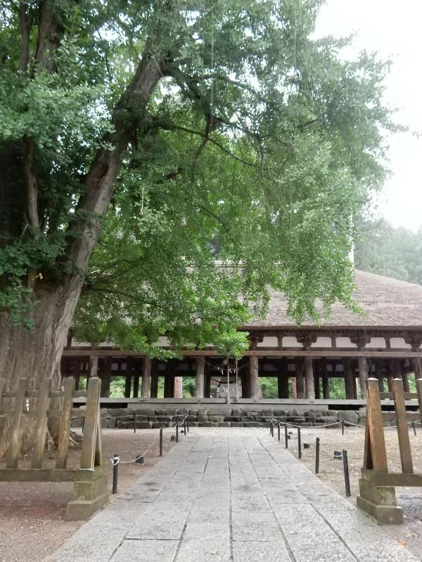 熊野神社長床2