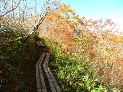 熊穴沢避難小屋へ木道