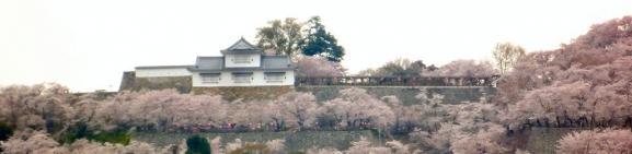 鶴山公園 遠景