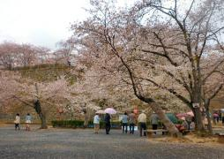 鶴山公園 その1