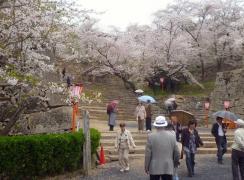 鶴山公園 その2