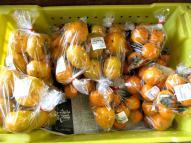 柿 一袋¥100