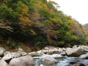 渓流には巨大な岩がゴロゴロと