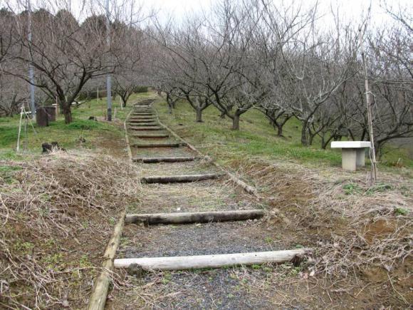 梅の里 公園内の小径