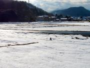 雪景色(2012年2月3日)