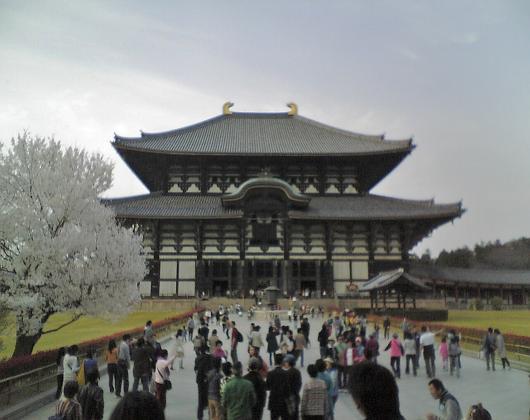東大寺(正面)