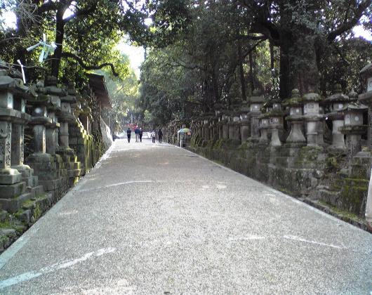 春日大社(参道)