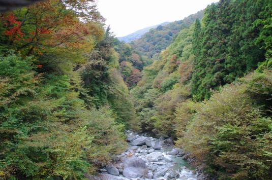 紅葉残念 尾白川渓谷