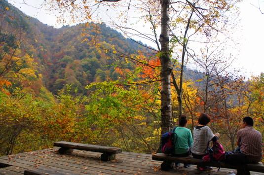 紅葉 西沢渓谷 折り返し地点