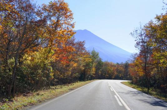 紅葉 富士山 下