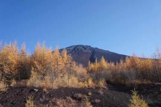 紅葉 富士山 五合目手前 富士山