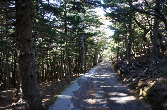 奥庭自然公園 遊歩道