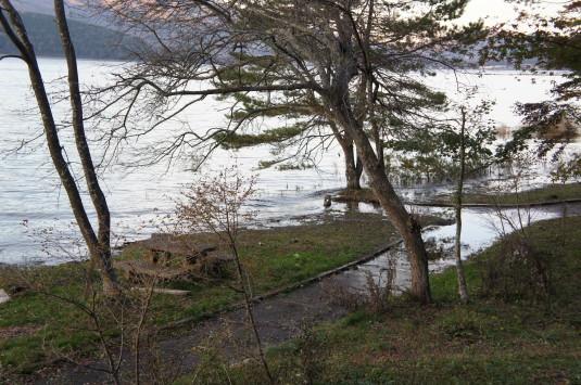 紅葉 山中湖 様子
