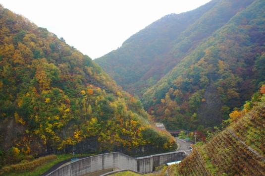 紅葉 塩川ダム 見下ろす