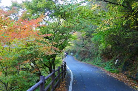紅葉 昇仙峡 遊歩道
