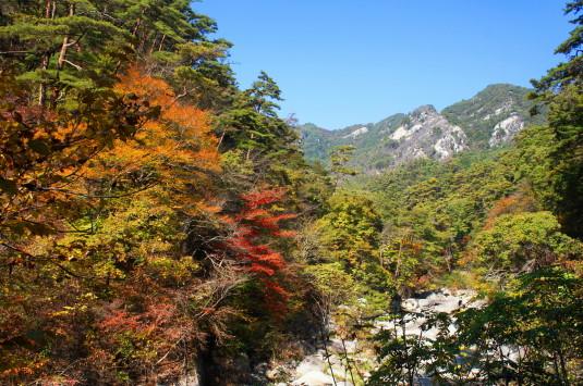 紅葉 昇仙峡 入口 紅葉1