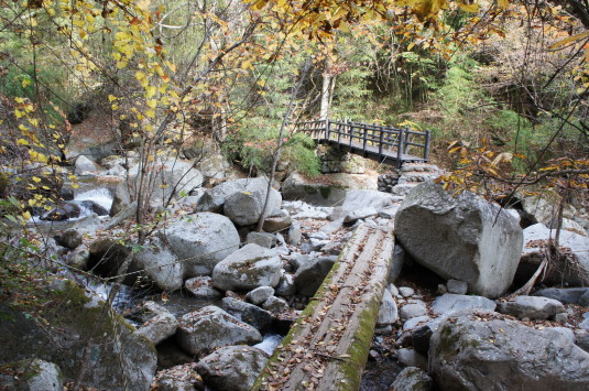 紅葉 竜門峡 橋2