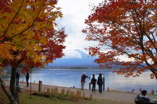 紅葉 河口湖 湖畔