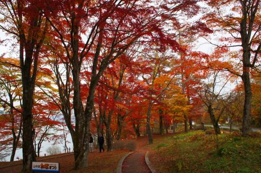 紅葉 山中湖 撮影ポイント