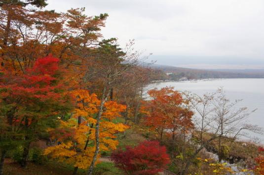 紅葉 山中湖 展望台