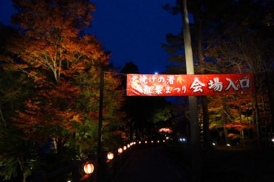 紅葉 山中湖 ライトアップ 入口