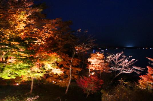 紅葉 山中湖 ライトアップ 展望台