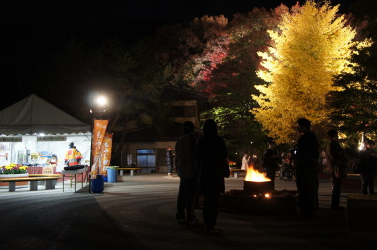 紅葉 河口湖 ライトアップ 焚火
