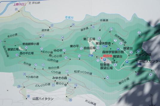 紅葉 武田の杜 マップ