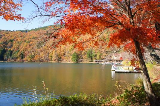 紅葉 四尾連湖 外観